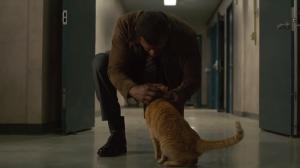 Captain-Marvel-Cat-Nick-Fury-Betrayal