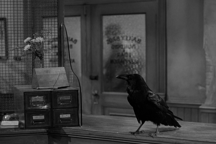 Jimmy_the_raven_in_It's_a_Wonderful_Life